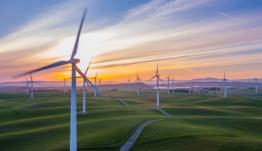 Emprendimiento verde: ayuda gratuita para proyectos verdes