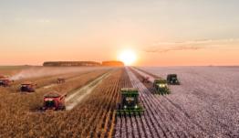 España destinará 14 MM de euros a la innovación agraria
