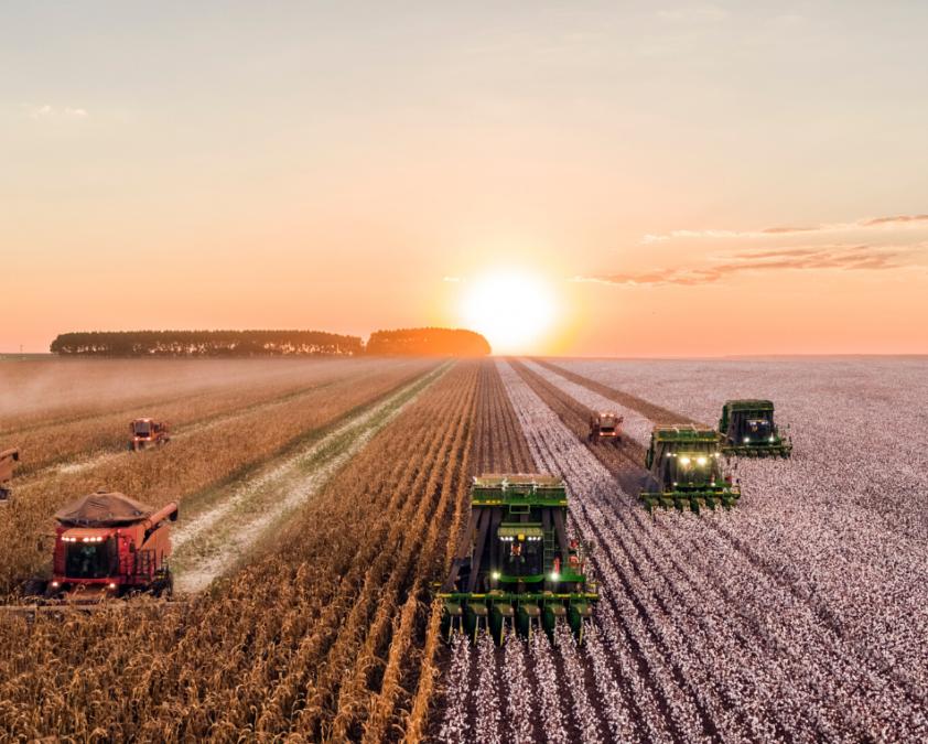 España destinará 14 MM euros a innovación agraria