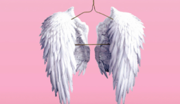 ¿Qué es un business angel? ¿En qué se diferencia de un venture capital?